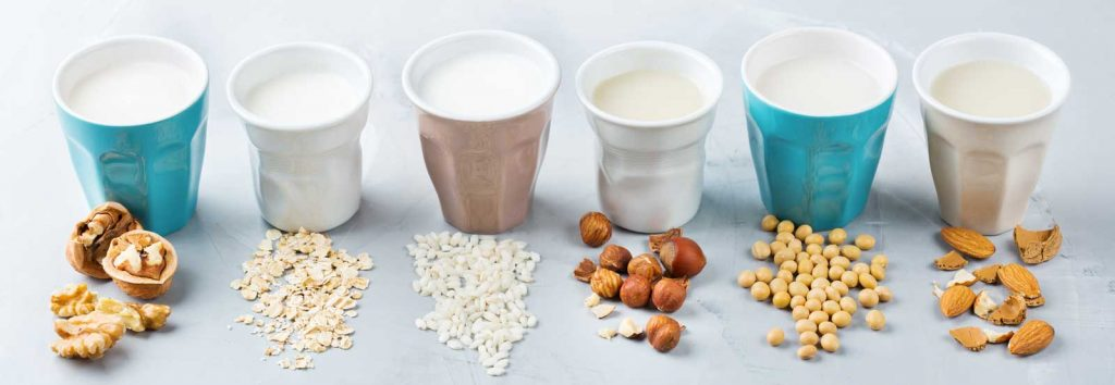 dairy alternative milks